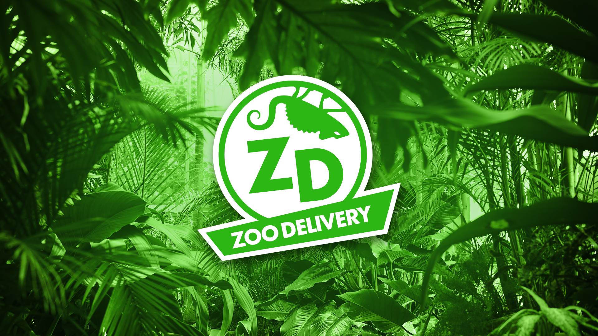 TMF - CAR - Zoo Delivery